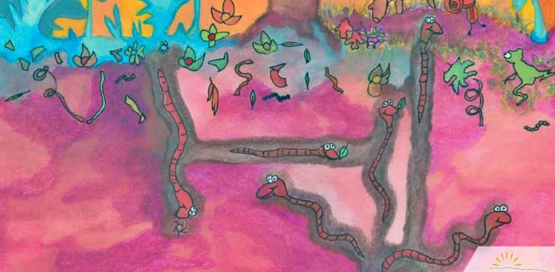 Manual de Huertas Educativas: la huerta en la escuela (Documento)