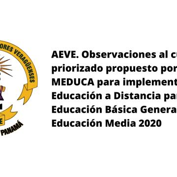 AEVE. Observaciones al currículo priorizado propuesto por el MEDUCA